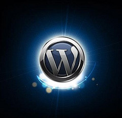 Wordpress SEO Consultant